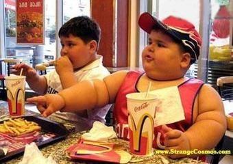 Fat Kids Also Dumb
