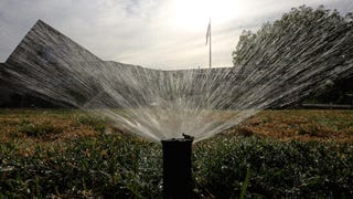 Finally! California Just Issued Mandatory State Water Restrictio