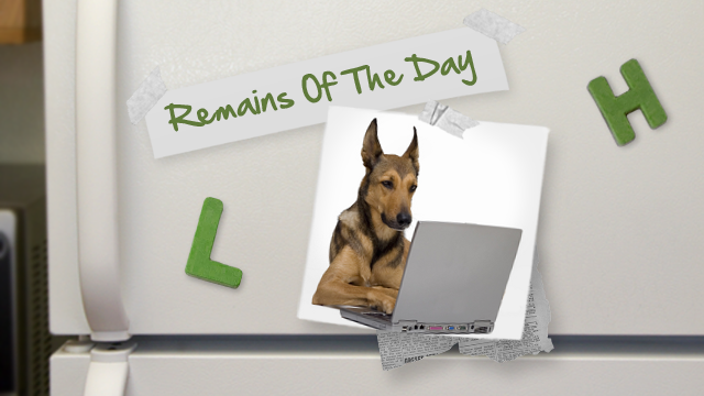Remains of the Day: Many Wordpress Sites Redirecting to Malware