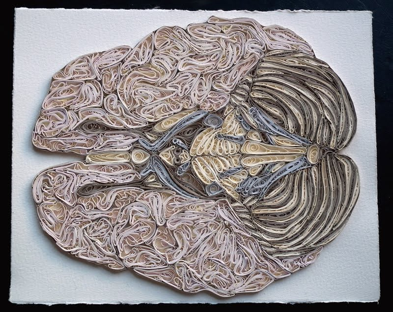 This beautiful anatomical art is made of paper, not flesh and bone