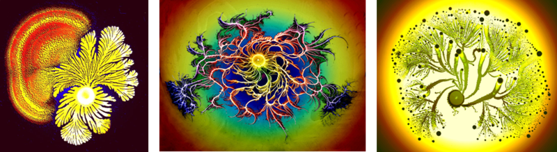 Bacterial communities swarm into gorgeous works of art