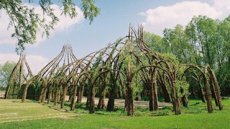 Behold These Incredible Works Of Architecture Made Out Of Living Trees