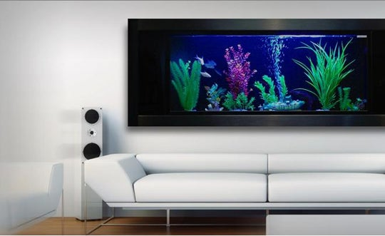 AquaVista Aquarium Is the Other Way To Put 3D Fish On Your Wall