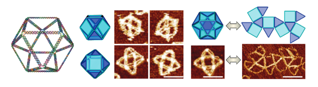 New DNA Origami Method Creates Amazingly Complex Molecular Structures