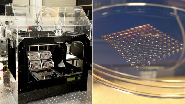 Scientists Have 3D-Printed Embryonic Stem Cells
