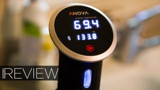 Anova Precision Cooker Review: Killer Sous Vide for Everyone