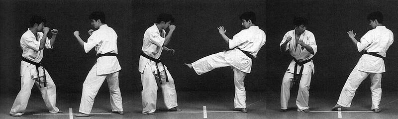 The Road to Black Belt: The Terror of the Low Kick