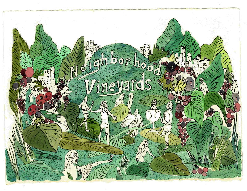 Mapping San Francisco's Microclimates With Wine Grown in the City