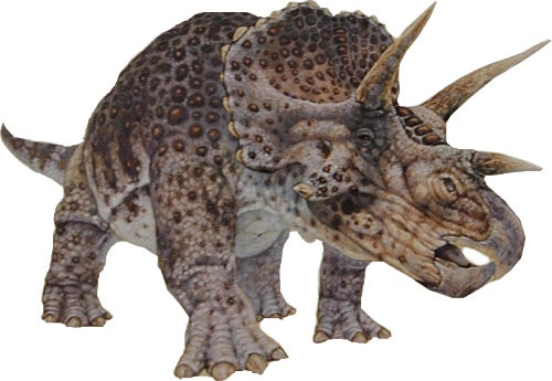 The Triceratops Never Existed, It Was Actually a Young Version Of Another Dinosaur