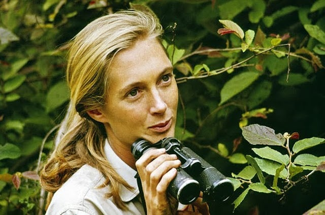 Famed Primatologist Jane Goodall on Science and Religion