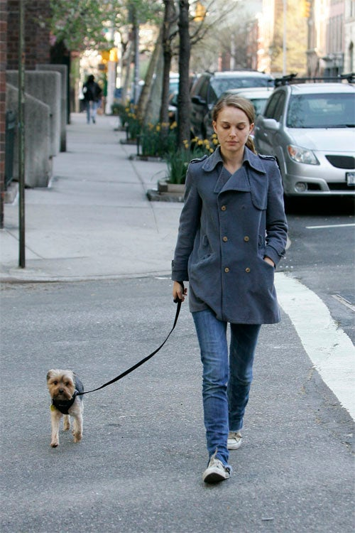 Peed-On Natalie Portman Keeps Dog At A Safe Distance