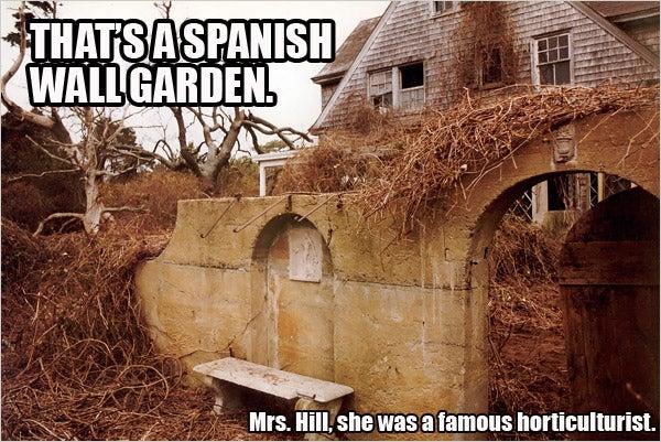 LOL Grey Gardens
