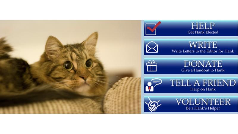 A Cat Came in Third in Virginia's Senate Race