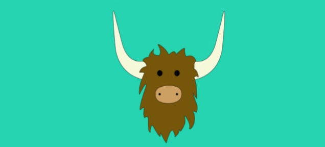 Yik Yak Wants to Be More Than Your Kid's Favorite Shit-Talking App