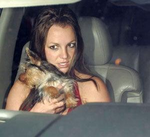 Britney Spears Chooses Starbucks Over Court-Date