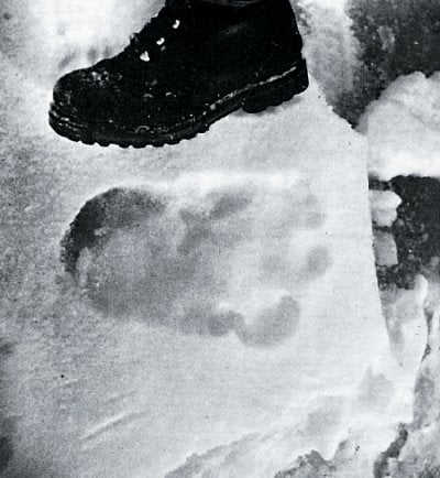 The science of yeti footprints