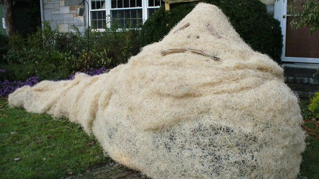 Star Wars made entirely out of scarecrows wins best Halloween lawn on this Earth