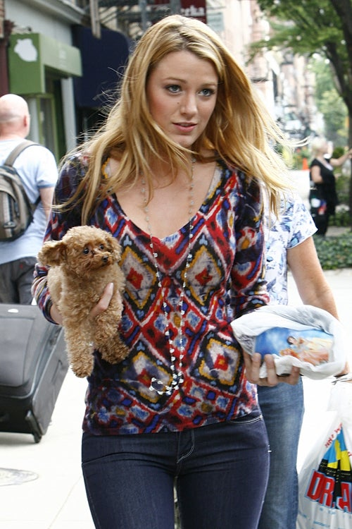 Blake Lively's Pup & Princesses