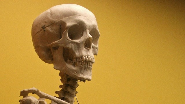 Preserved bacteria reveal how we've been rotting our teeth for 7,500 years