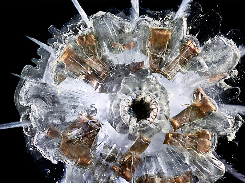 Exploding Bullets Frozen In Plexiglass Are Hauntingly Beautiful