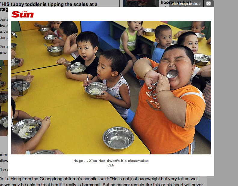 Meet Xiao Hao, the 140-Pound Three-Year-Old