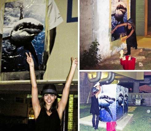 Alba's A Vandal; Beyoncé's A Diva; Brad's Artsy-Fartsy