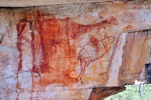 Ancient painting of the giant bird that roamed Australia 40,000 years ago