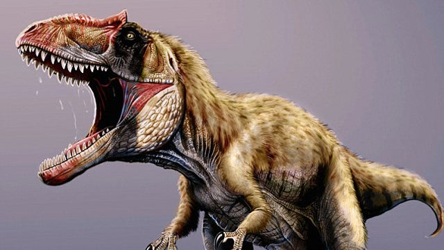 This colossal new megapredator may have outsized T. rex