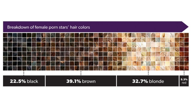 Porn Star Demographics, Visualized