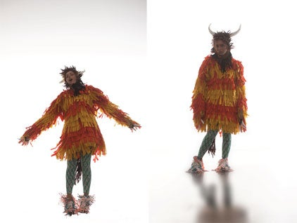 What the Wild Things Wear