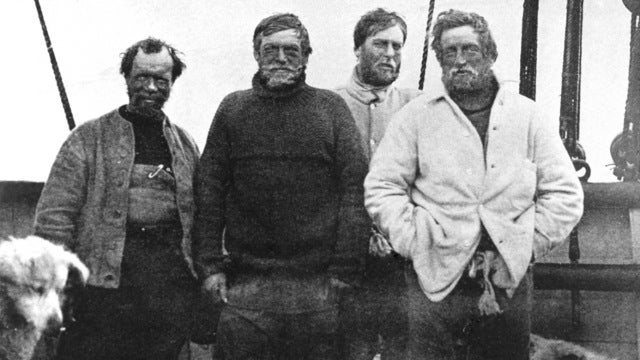Would you buy a 104-year-old biscuit from Ernest Shackleton?