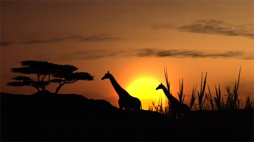 Sony Skipping Afrika For Europe