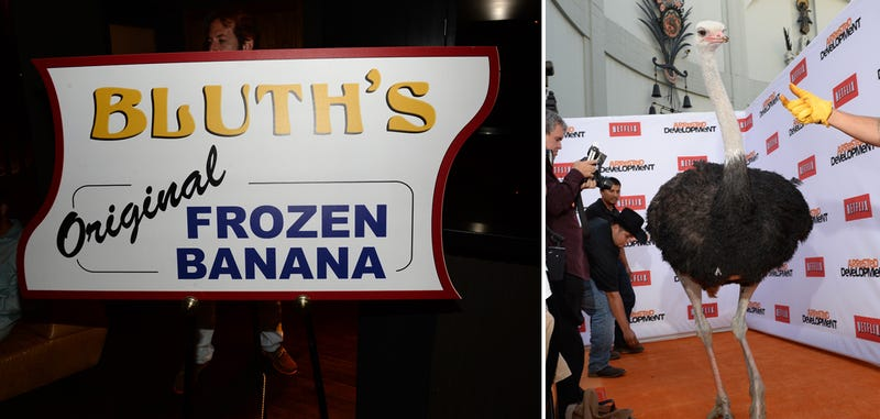 'Twas a Bluth Family Reunion at the Arrested Development Premiere
