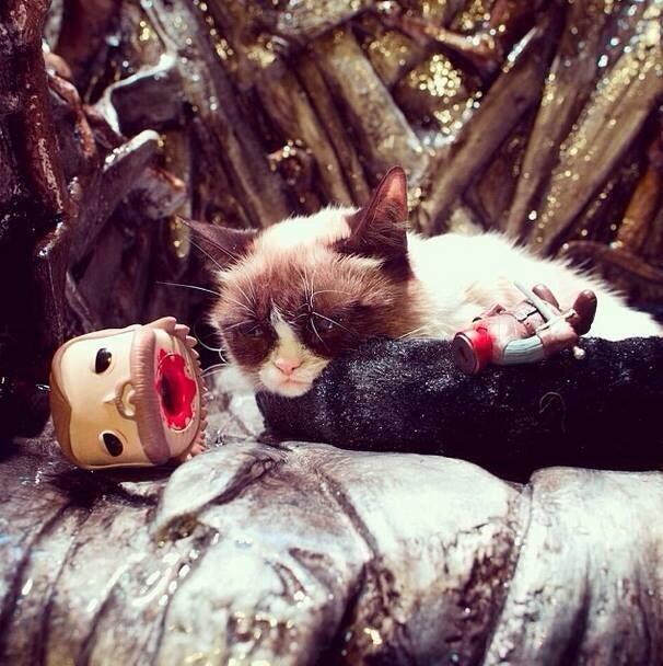 Grumpy Cat on the Iron Throne.