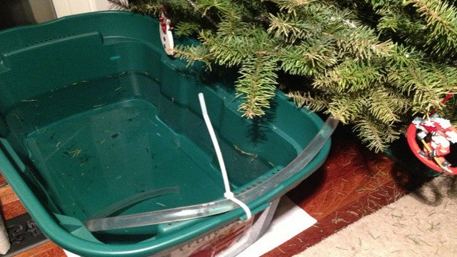 Set Up a Siphoning Water Reservoir When Leaving Your Christmas Tree for a Few Days