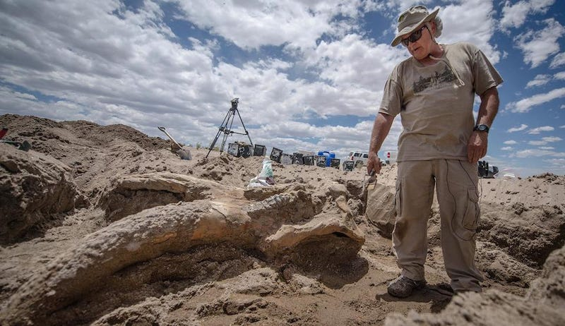 Bachelor Party Finds One Last Taste of Freedom, Also a Mastodon Skull