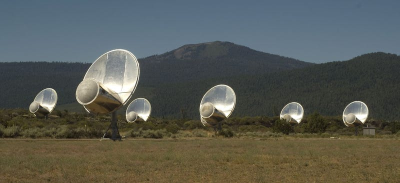 How will the government react when we detect alien signals from space?