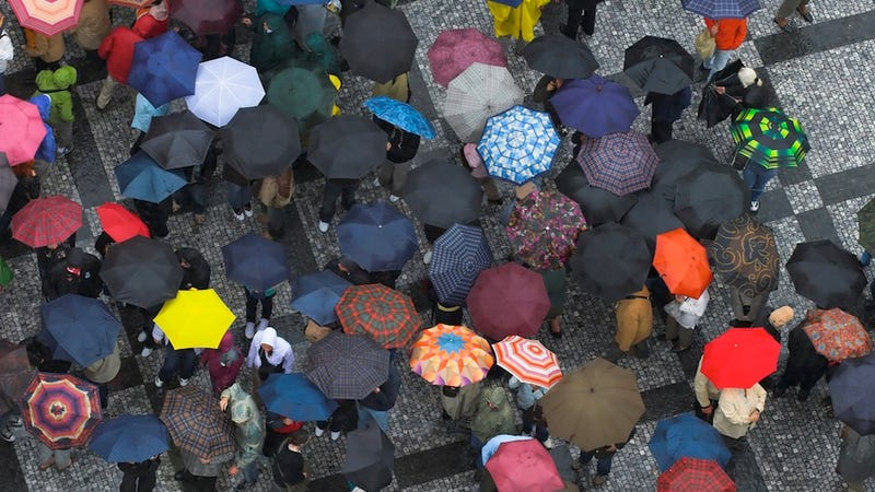 Text-Friendly Umbrellas Will Be the Worst Thing to Happen to Sidewalks