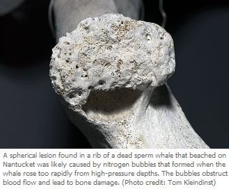 What it Would Really Be Like to be Aquaman