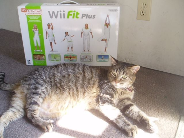 Wii Fit On Public Transit — Not A Good Idea