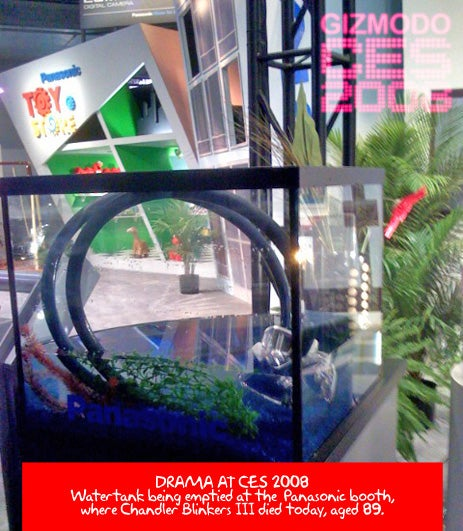 Chandler Blinkers III Drowns at Panasonic's Waterproof Camera Showcase Tank