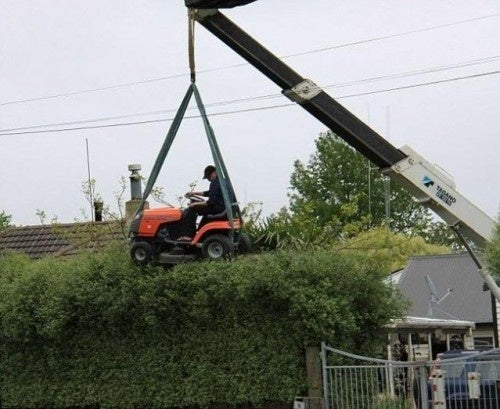 How To Trim Tall Bushes