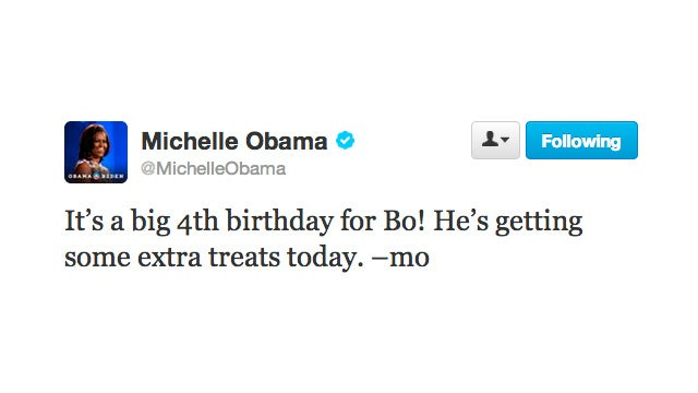 Light the Candles! White House Dog Bo Obama Is Four Years Old
