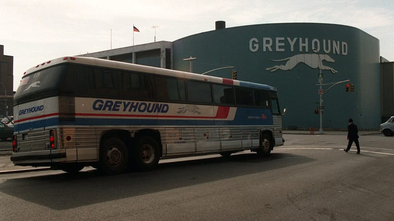 Roach-Infested Nightmare Bus Forced to Evacuate on New Jersey Highway