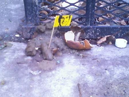 Remainders: In the Poop