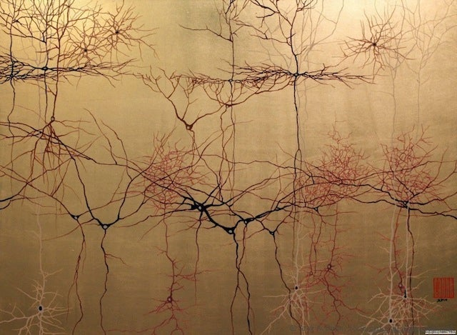 Striking paintings combine Japanese watercolor with the structures of the brain