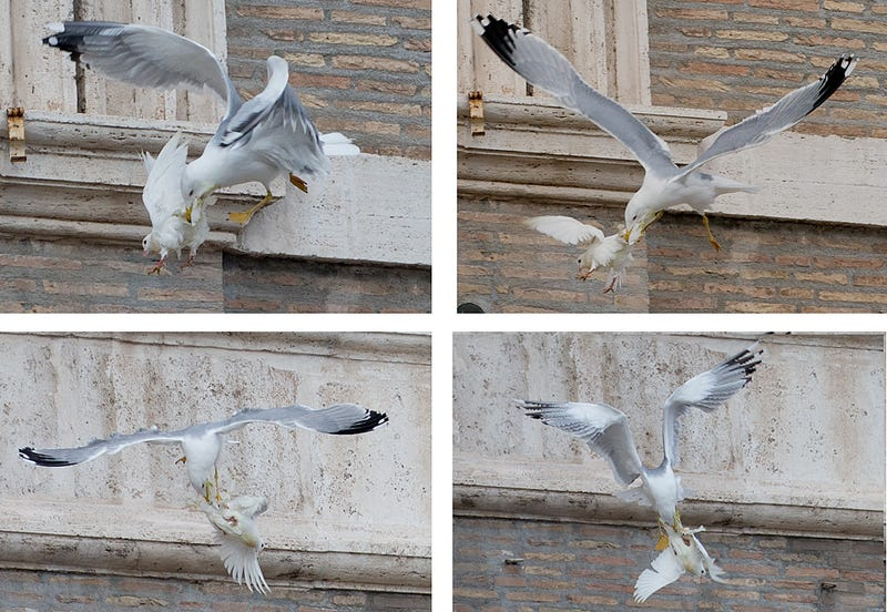 Evil Triumphs: Satanic Birds Attack Pope's Peace Doves