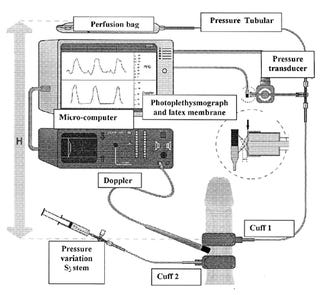 Seven (Mostly) Scientific Devices for Measuring Sexual Arousal