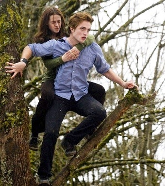 Twilight Increases Its Oscar Chances