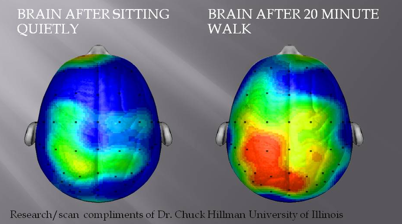 What Happens to Our Brains During Exercise (and Why it Makes Us Happier)